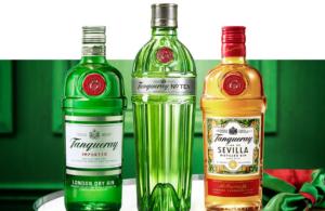 Gin: Tudo sobre a história da bebida e drinks!
