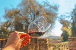 indústria VCT - vinhos Concha Y Toro