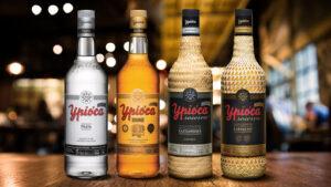 Cachaça: Tudo sobre a história, modo de consumo e Drinks!