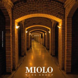 História da Indústria Miolo e drinks