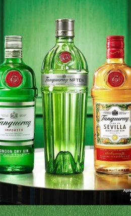 Gin Tanqueray – História e Drinks