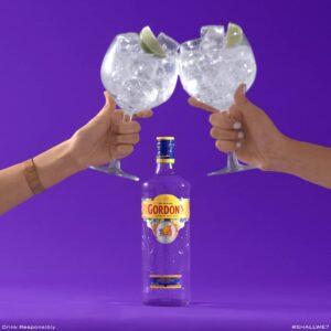 Gin Gordon's - História e Drinks