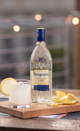 Gin Seagram's – História e Drinks