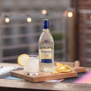 Gin Seagram's - História e Drinks